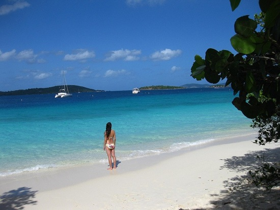 Wish You Were Here St John U S Virgin Islands