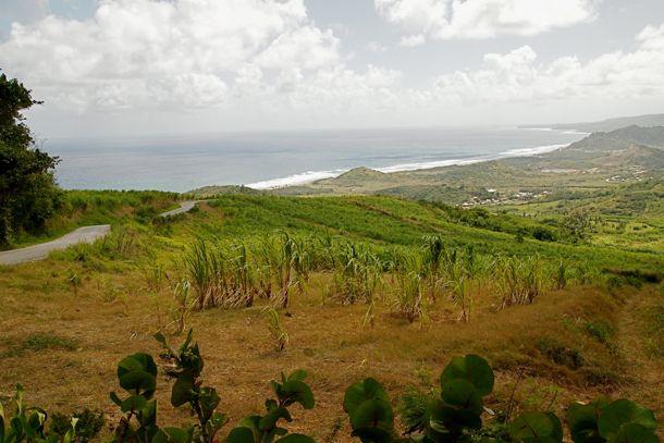 On Site Barbados The Undersea Secret Of The Scotland