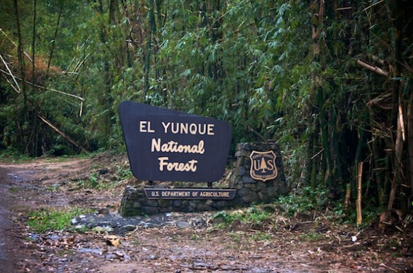 El Yunque National Forest, Puerto Rico sign
