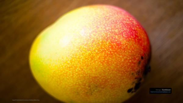 Mango Desktop Wallpaper by Patrick Bennett