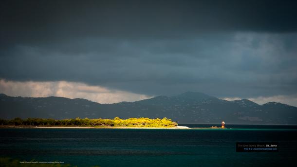 Sunny on Steven Cay, St. John by Patrick Bennett