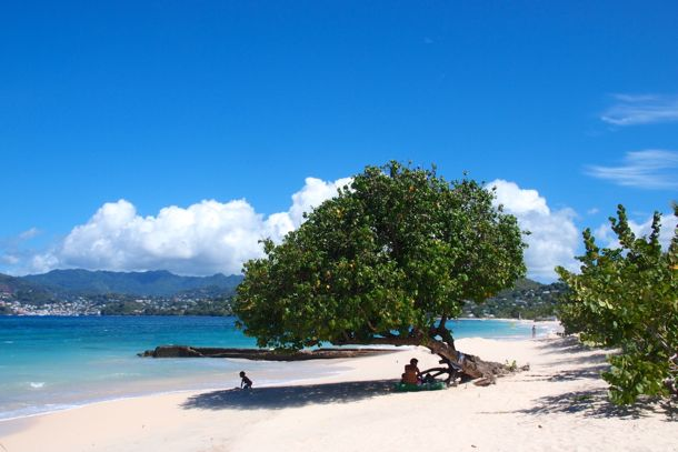 Wish You Were Here Limin In De Shade On Grand Anse Beach Grenada Grenada