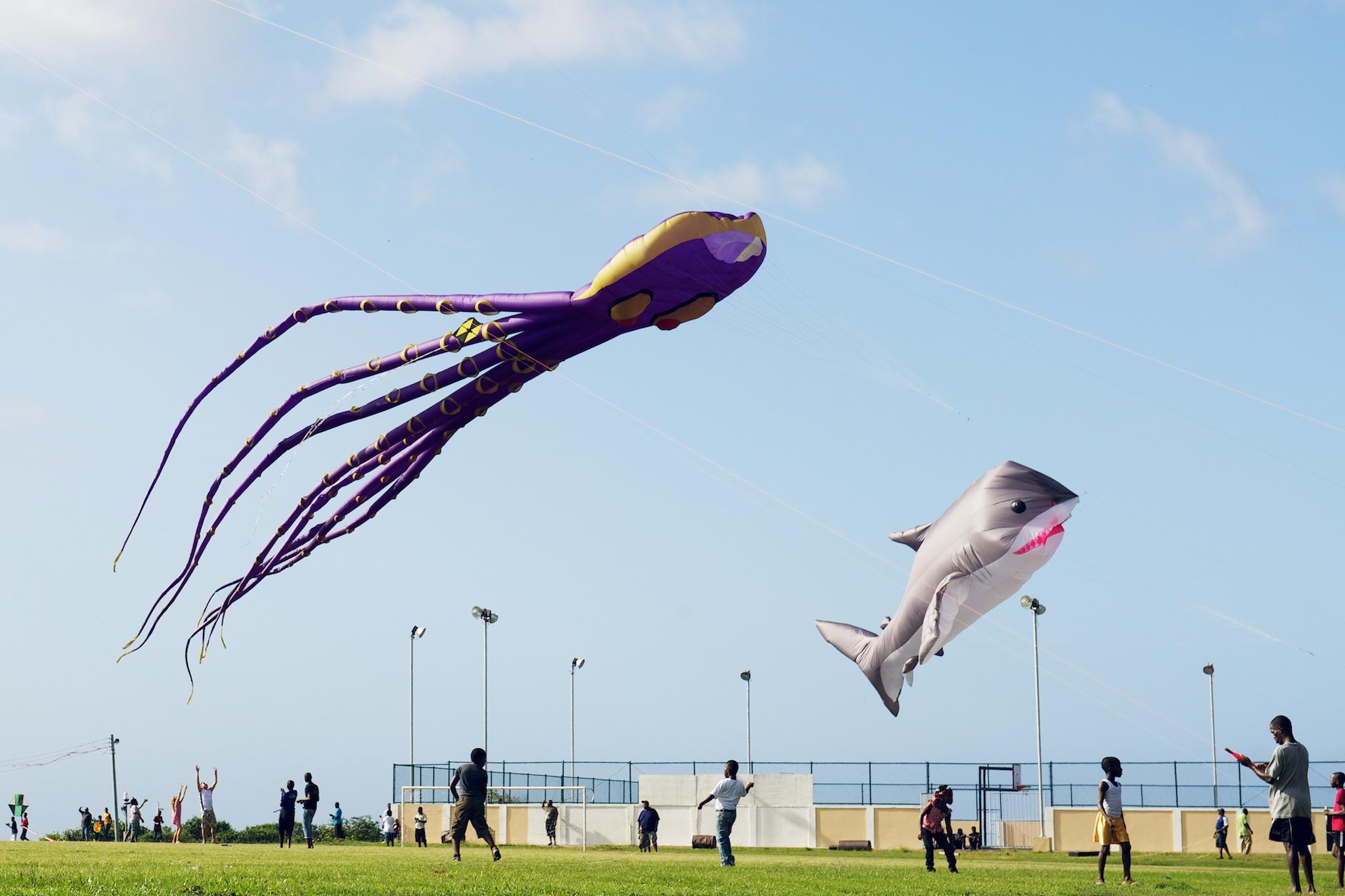 Tobago Flying Colours Kite Festival
