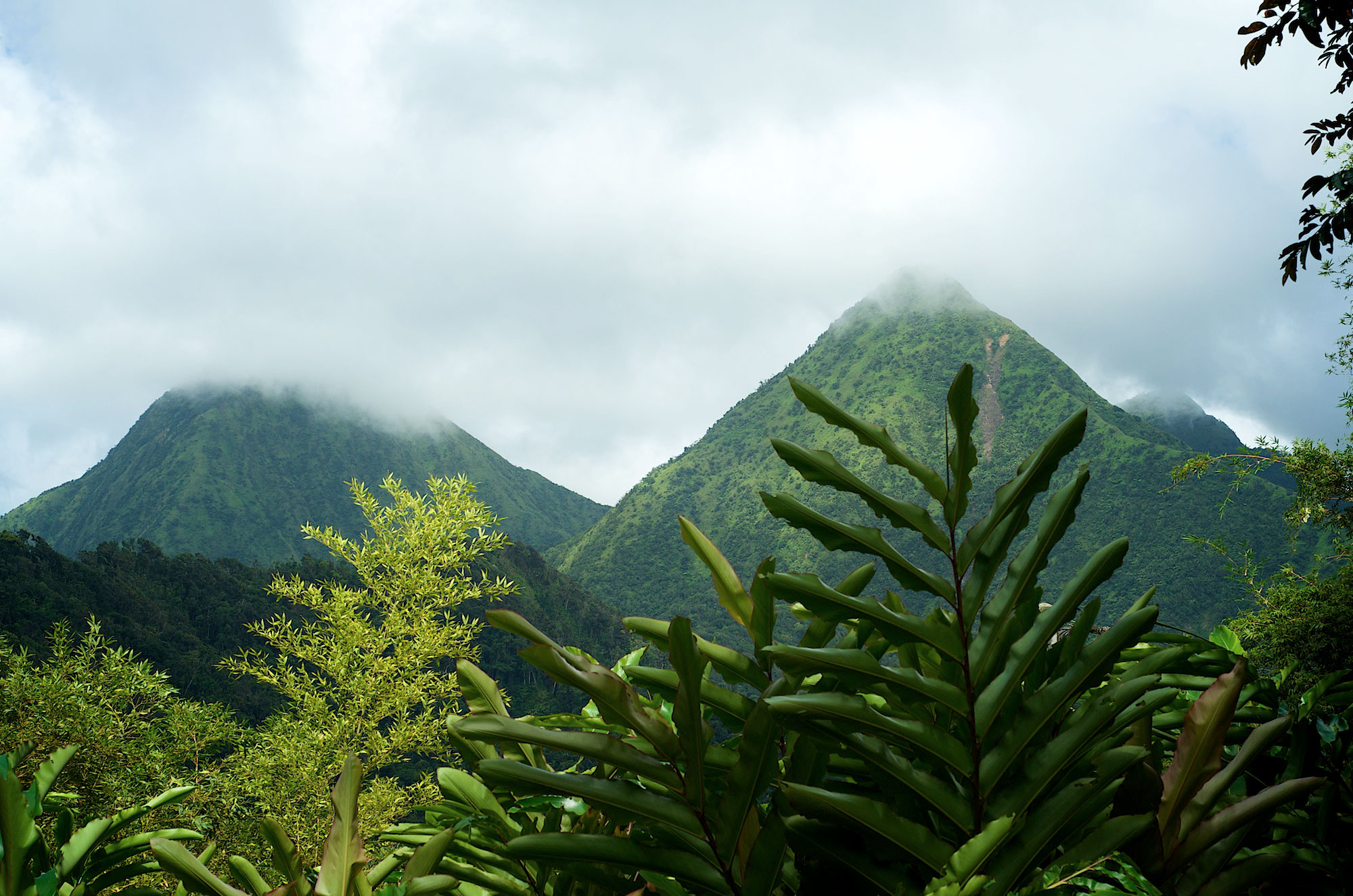 Martinique's Pitons du Carbet: Uncommon Attraction