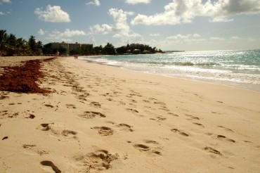 Dover Beach, Barbados | Credit: SBPR