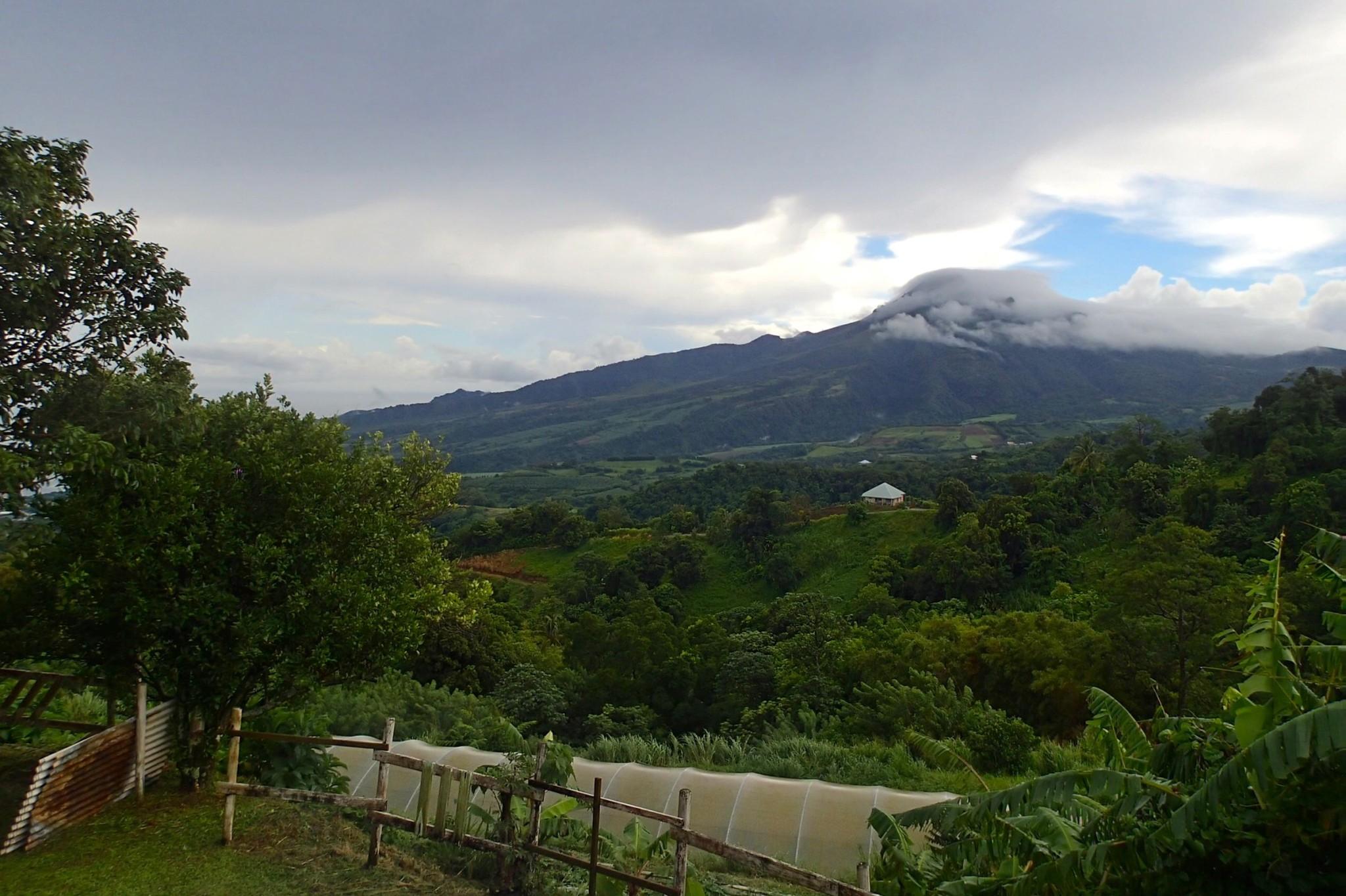 On-Site Martinique: Farm Stay Fun at Le Hameau du Morne des Cadets