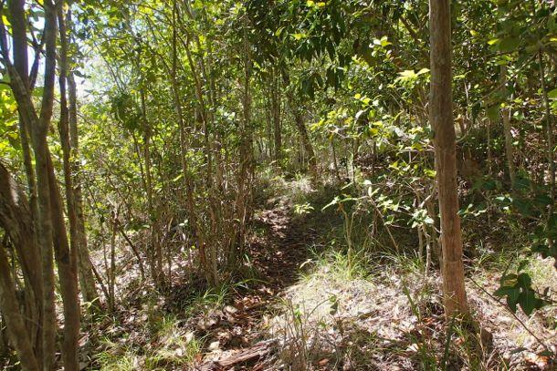 Where's the path? | SBPR