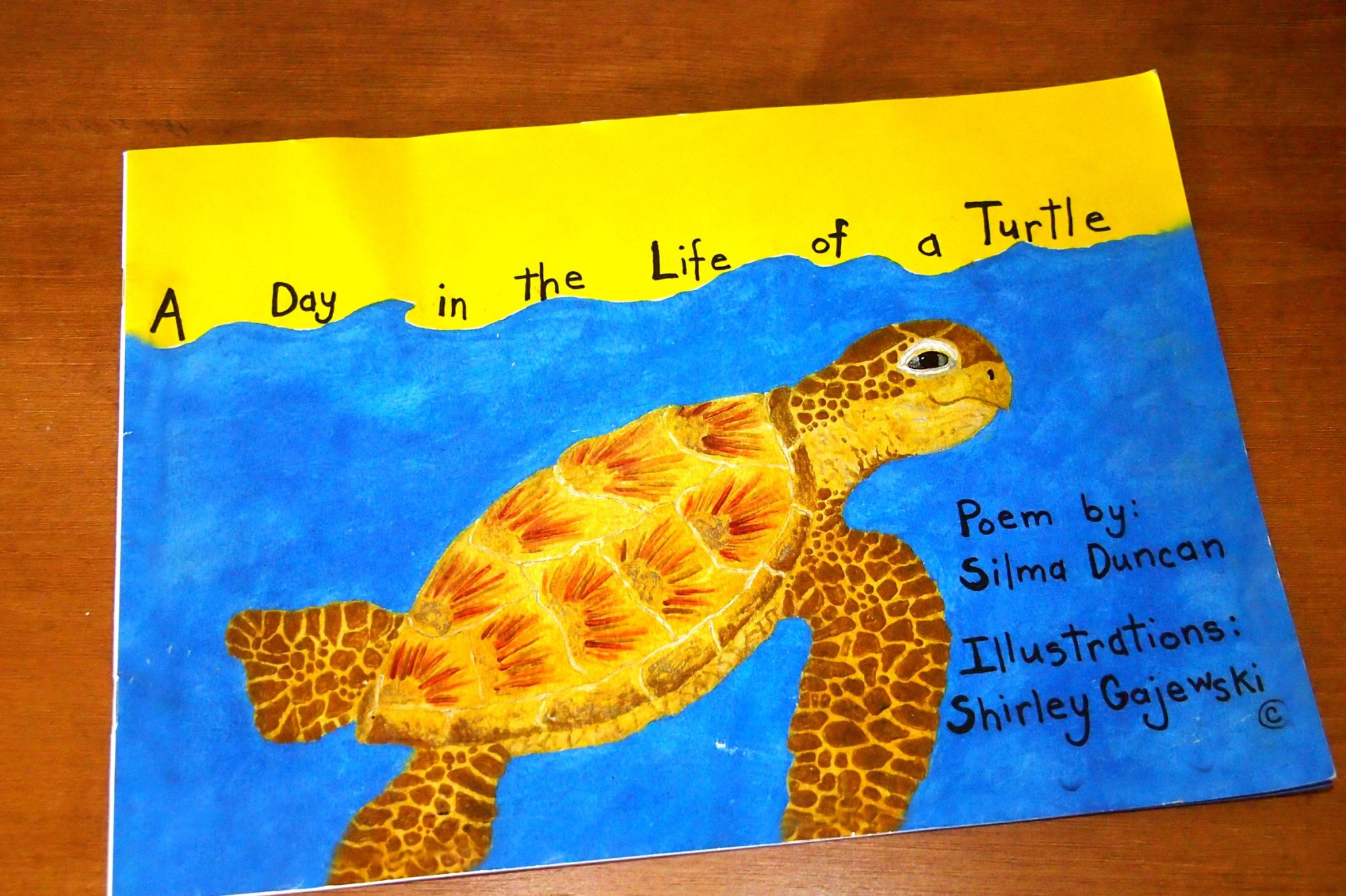 A Day in the Life of a Turtle, The Caribbean's Most Uncommon Children's Book