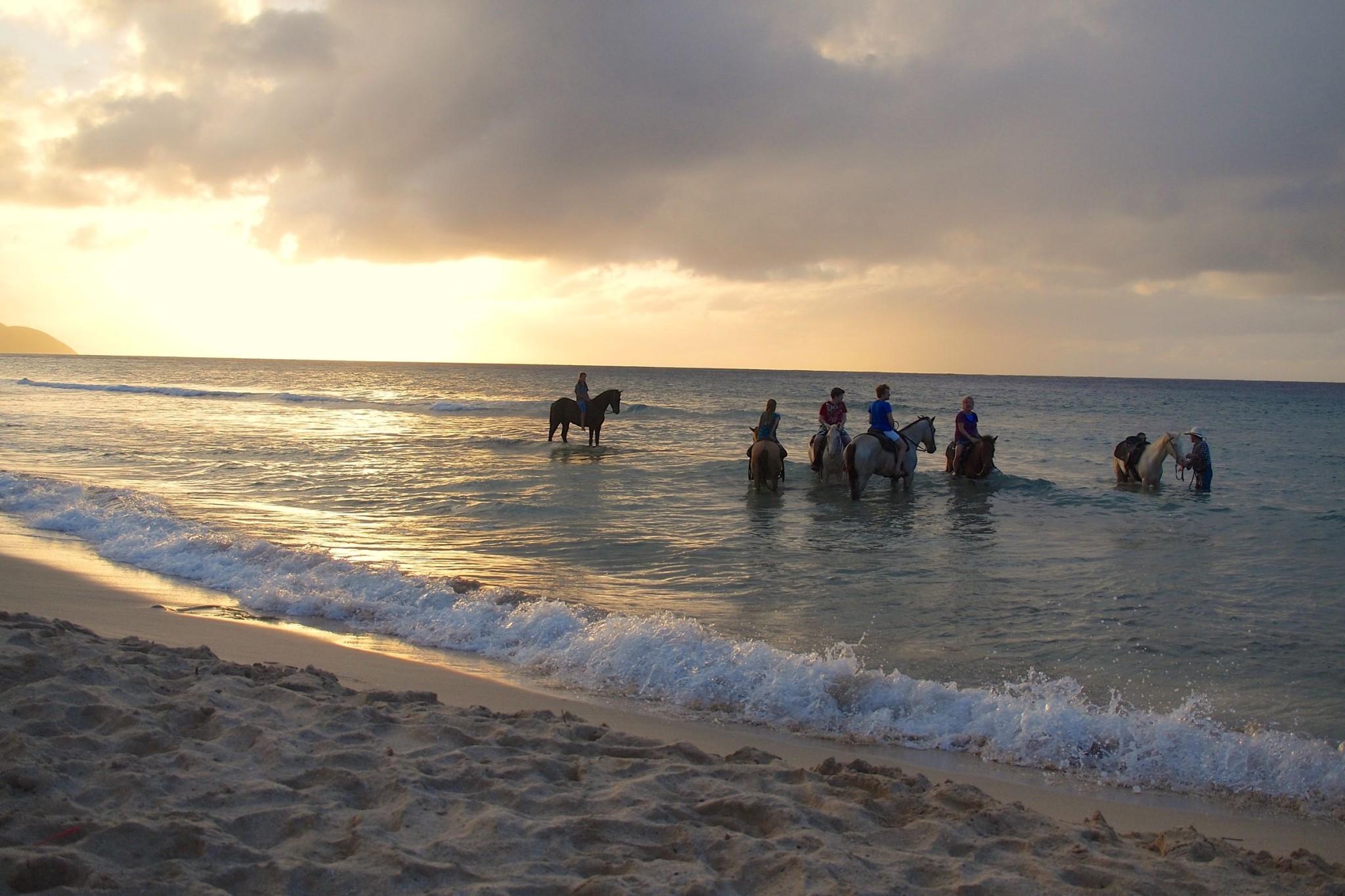 Horseback Riding Into the St. Croix Sea with Cowboy Steve: Uncommon Envy