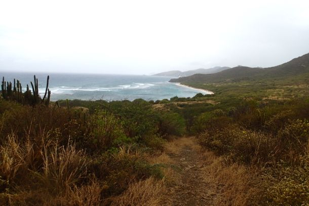 Jack's Bay in the Rain | SBPR
