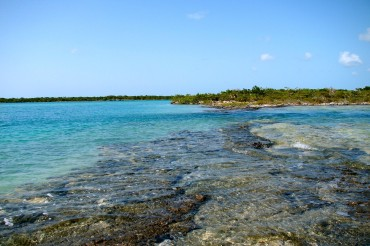 Tide Pools at Devil's Cut, Pine Cay | SBPR