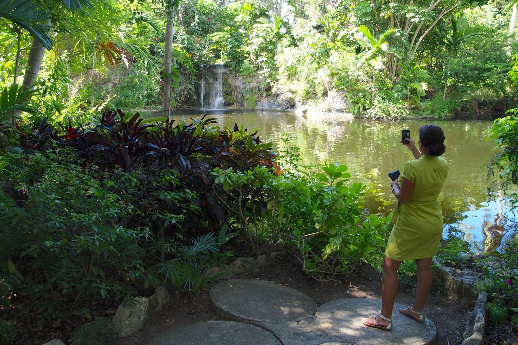 Exploring Grand Bahama's Garden of The Groves: Wish You Were Here