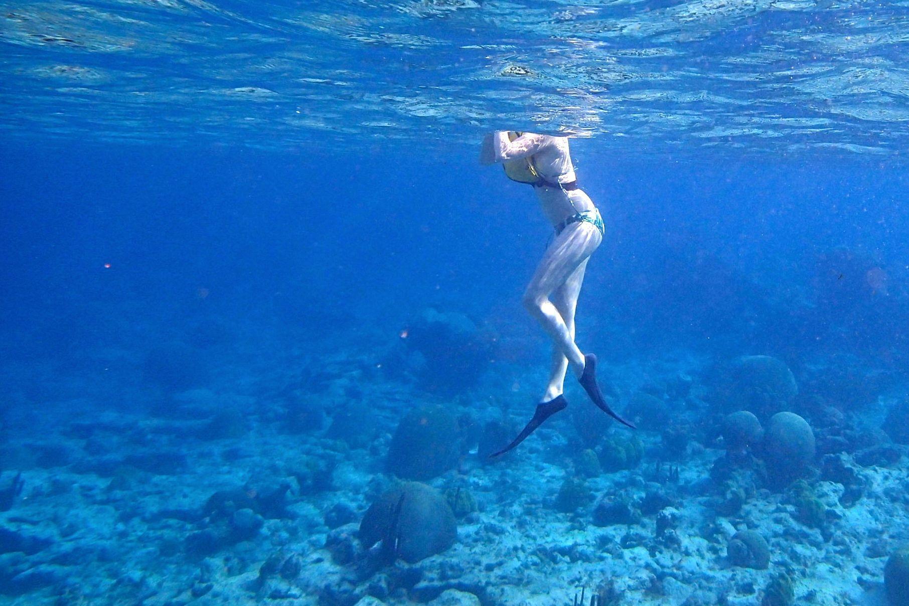 Buck Island Snorkeling St Thomas