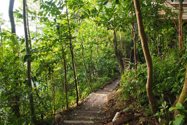Path to my cottage at Jungle Bay, Dominica | SBPR