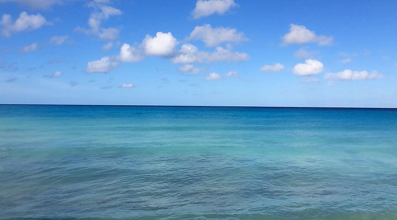 Watching the Waves Roll In From Cotton House 2, Barbados