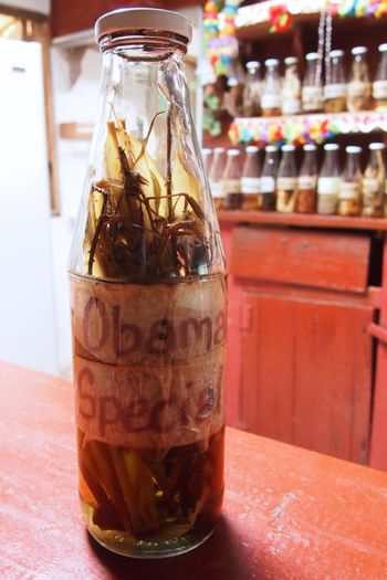 Obama Special at Rudy's Islet View Bar, Dominica | SBPR