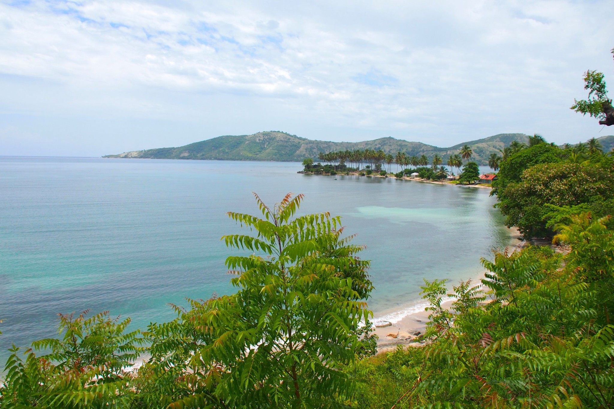 Somewhere Along The Road in Southern Haiti: Photo of the Day