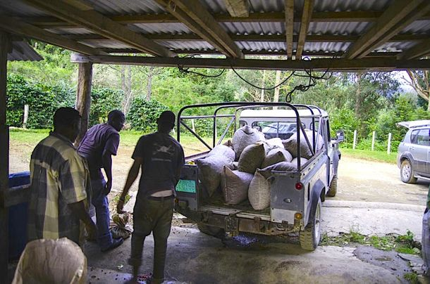 Coffee being loaded into the back of the Whitfield Hall Land Rover | Credit: Zickie Allgrove