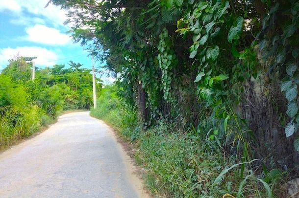 Semi-paved road in Bavaro   Credit: Laura Albritton