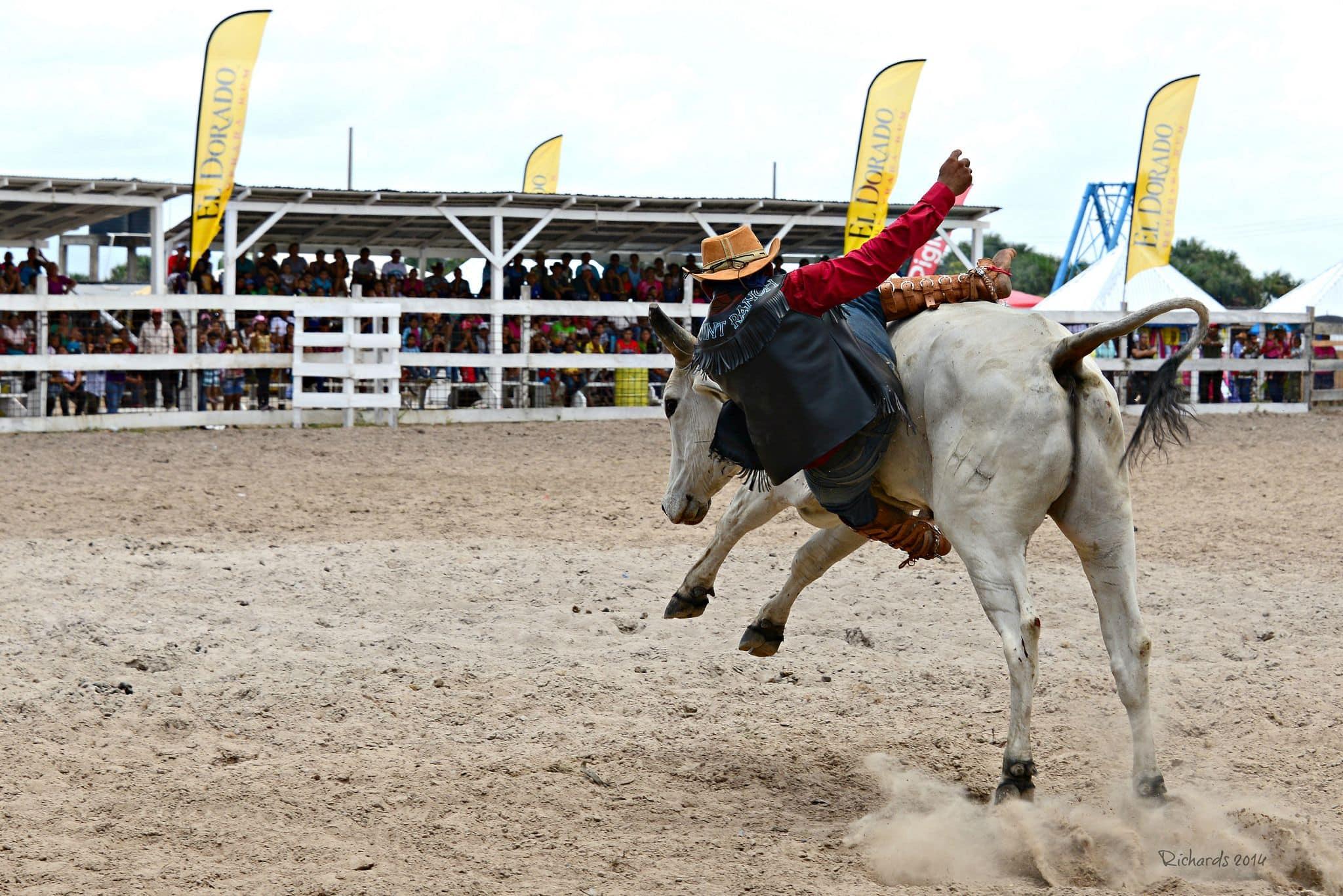 Saddle Up for Guyana's Wild Rupununi Rodeo