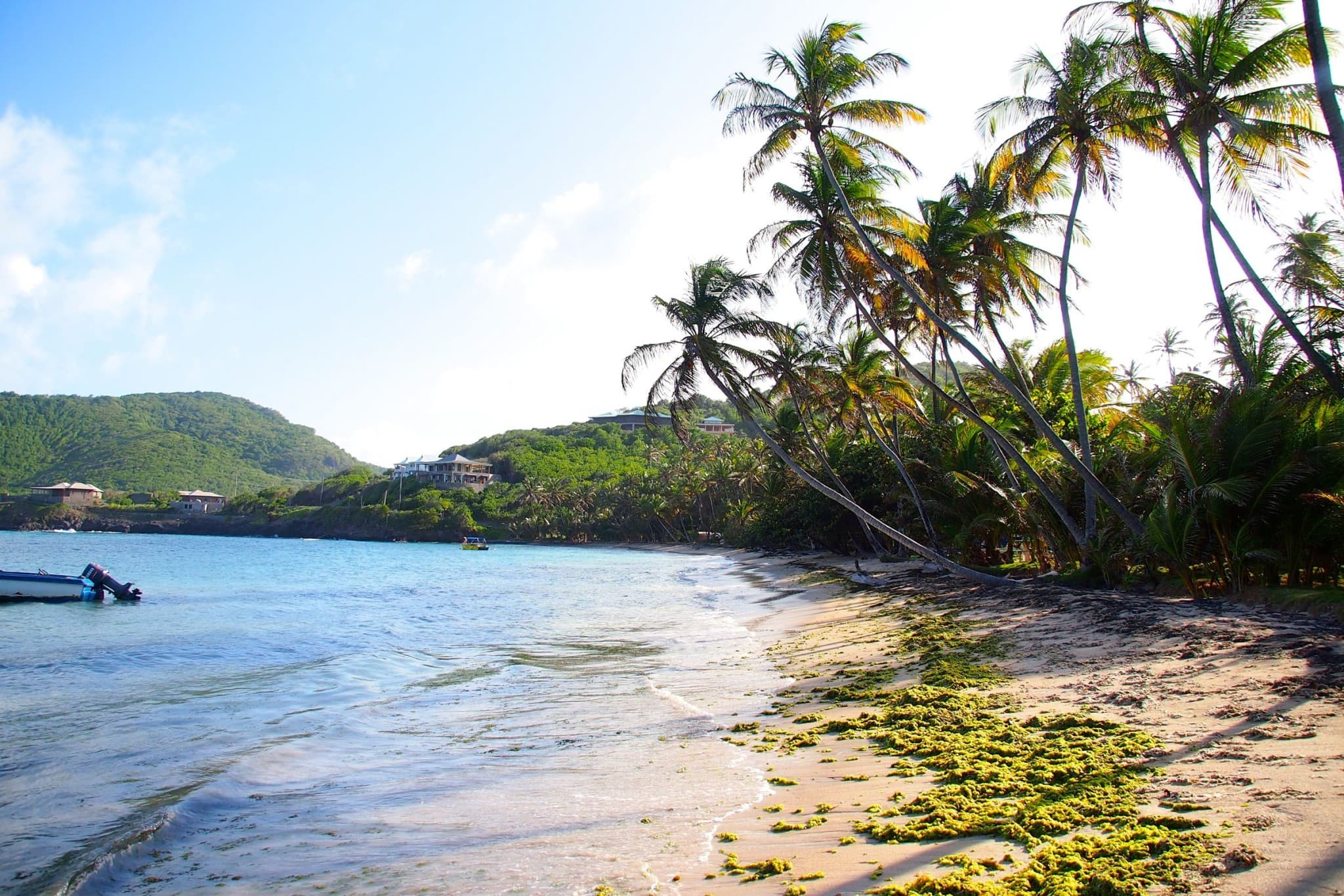 Industry Bay, Bequia: Photo of the Day