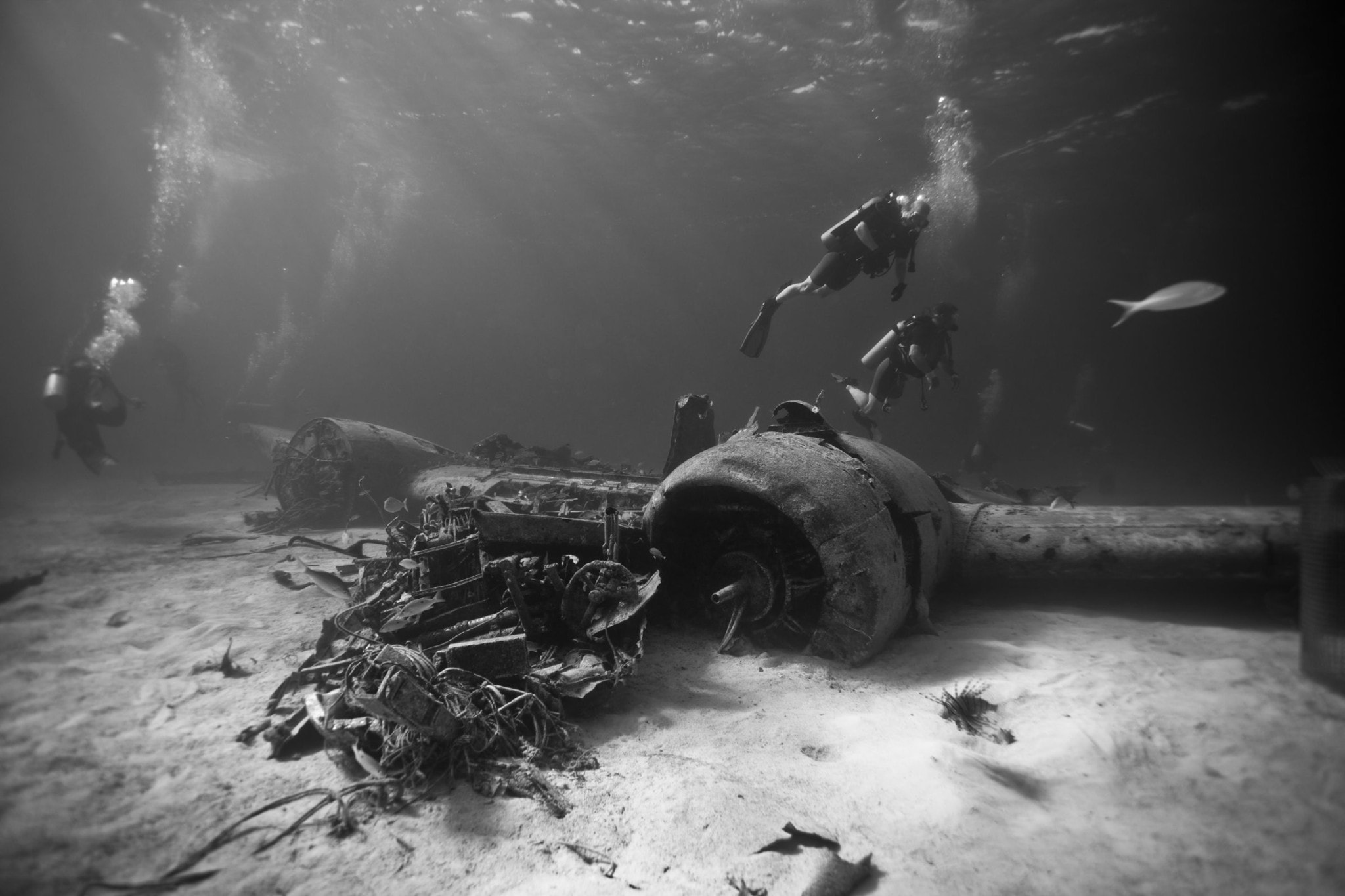 Smuggler's Plane Wreck Off Norman's Cay, The Bahamas: Uncommon Attraction