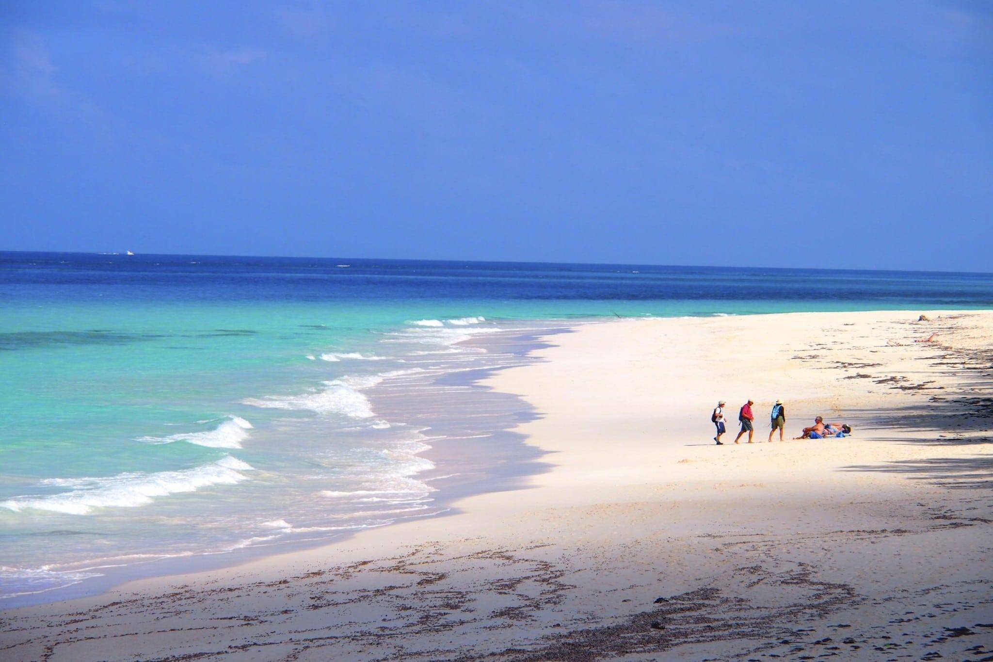 Exploring The Leeward Shores of Great Guana Cay, The Bahamas: Wish You Were Here