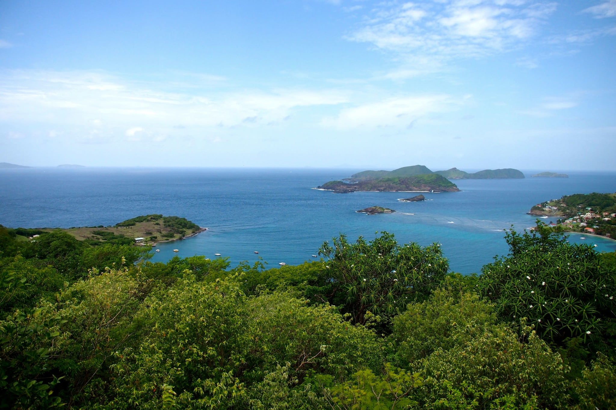 Greedy For More Grenadines: Photo of the Day