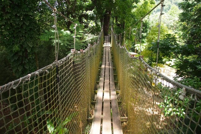 Treetop Trail suspension bridge   SBPR
