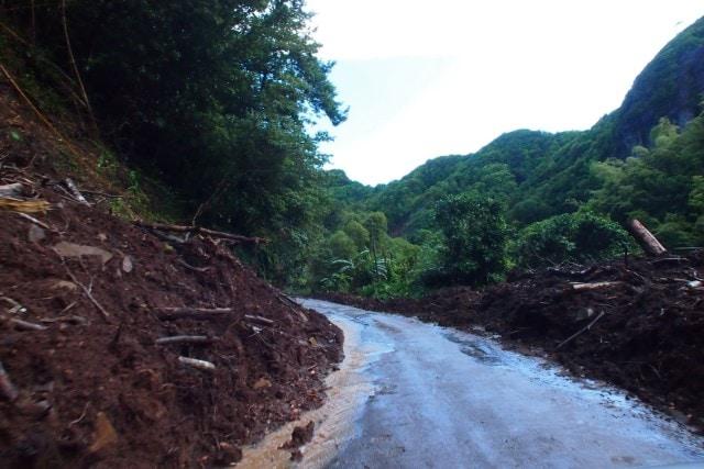 Road through Petite Savanne   SBPR