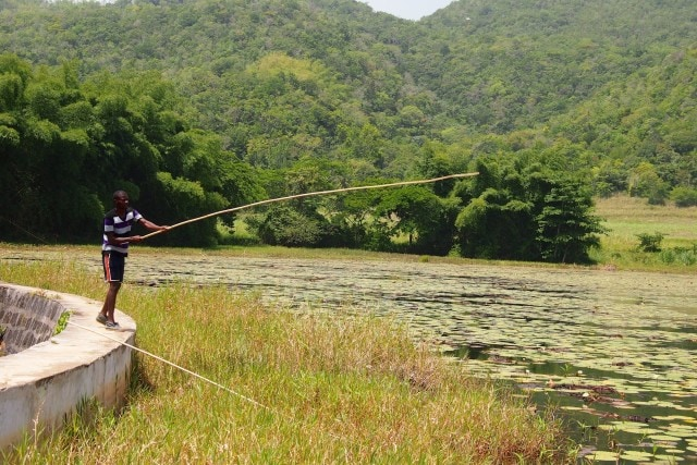 Back Country Fishing in Jamaica | SBPR