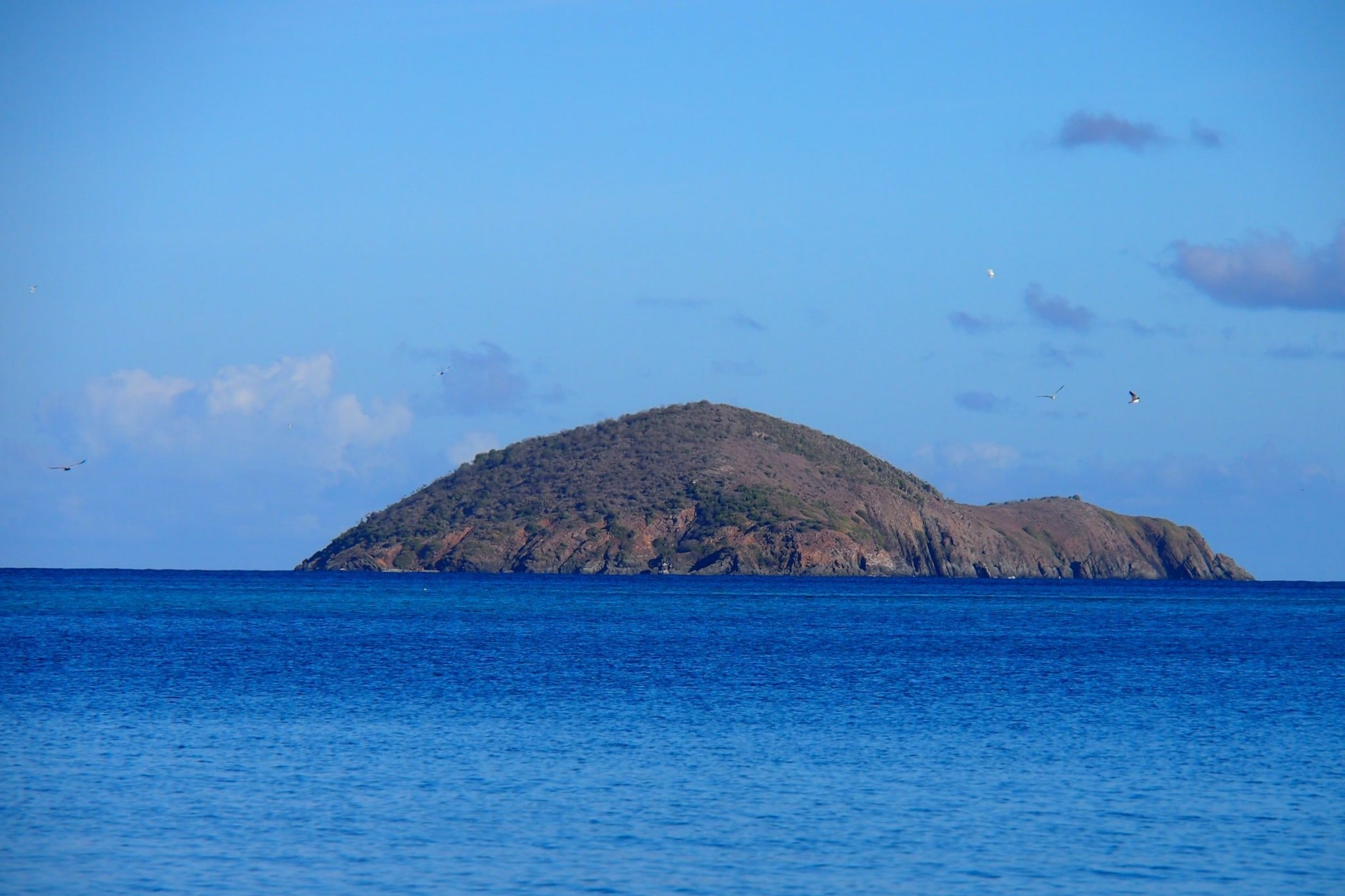 Outer Brass Island, St. Thomas: Uncommon Attraction