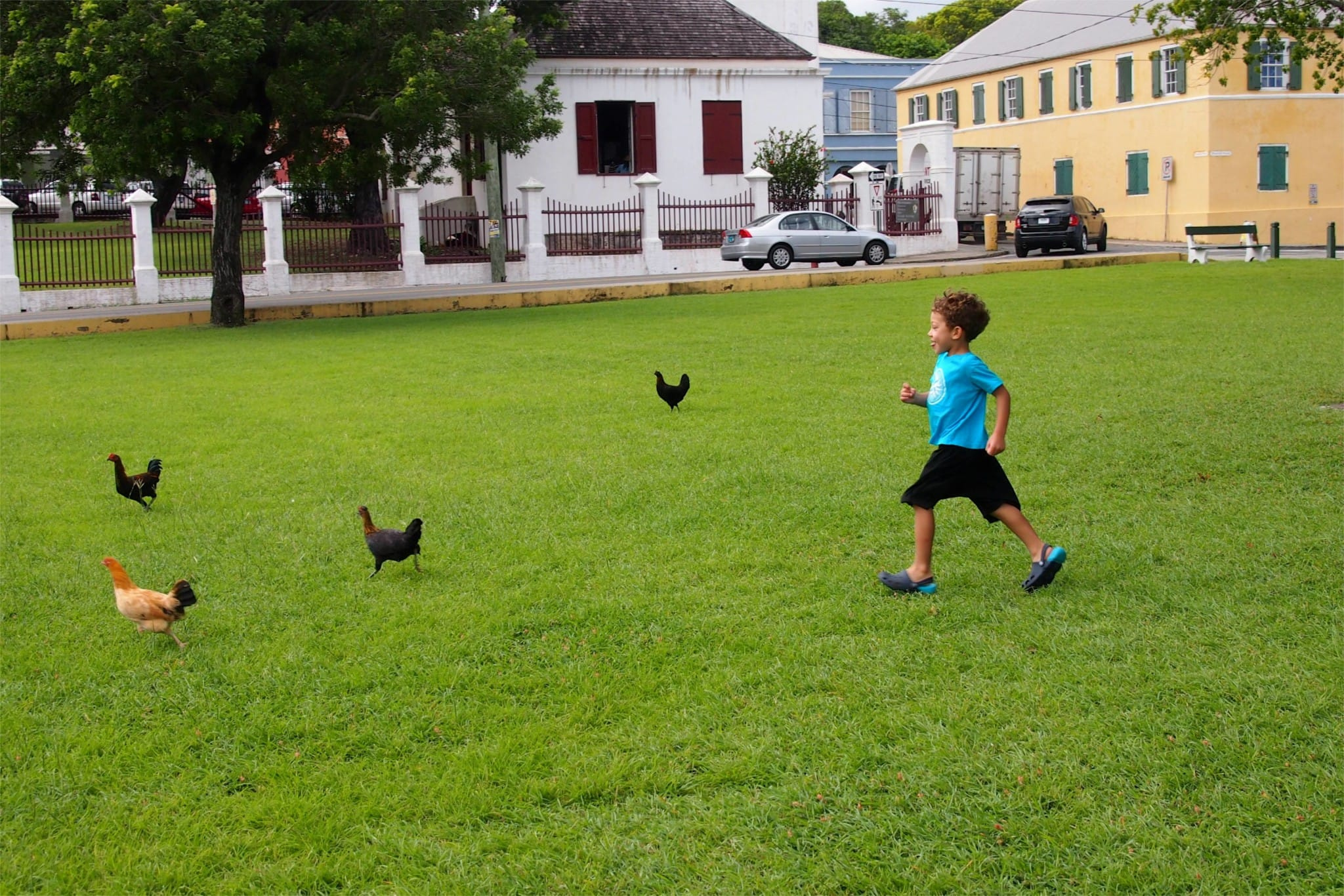 One Of The Simple Joys of Uncommon Travel in St. Croix