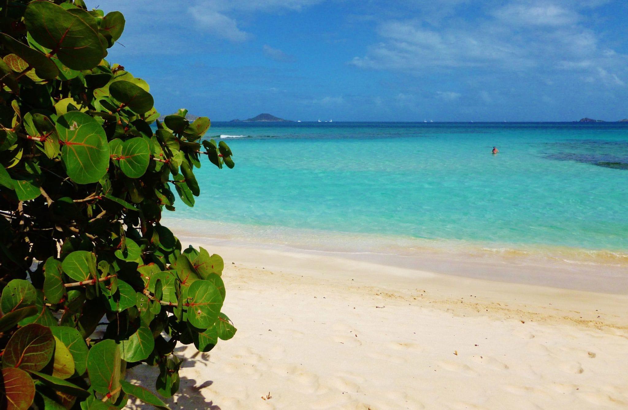 Beachin' It in the BVI's: Wish You Were Here