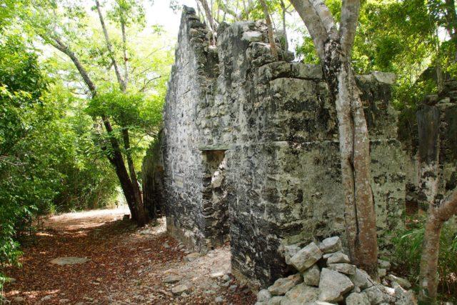 Wade's Green Plantation Ruins   SBPR