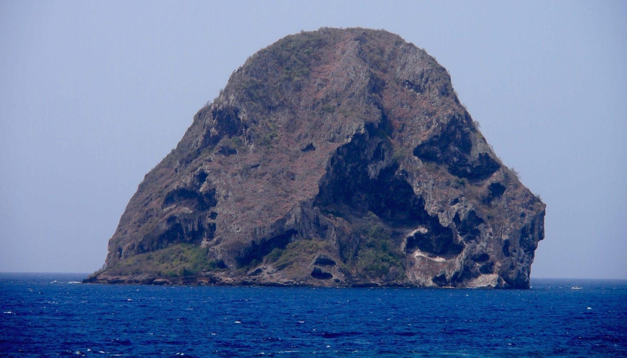 The Subtle Simian Side of Diamond Rock, Martinique: Uncommon Attraction