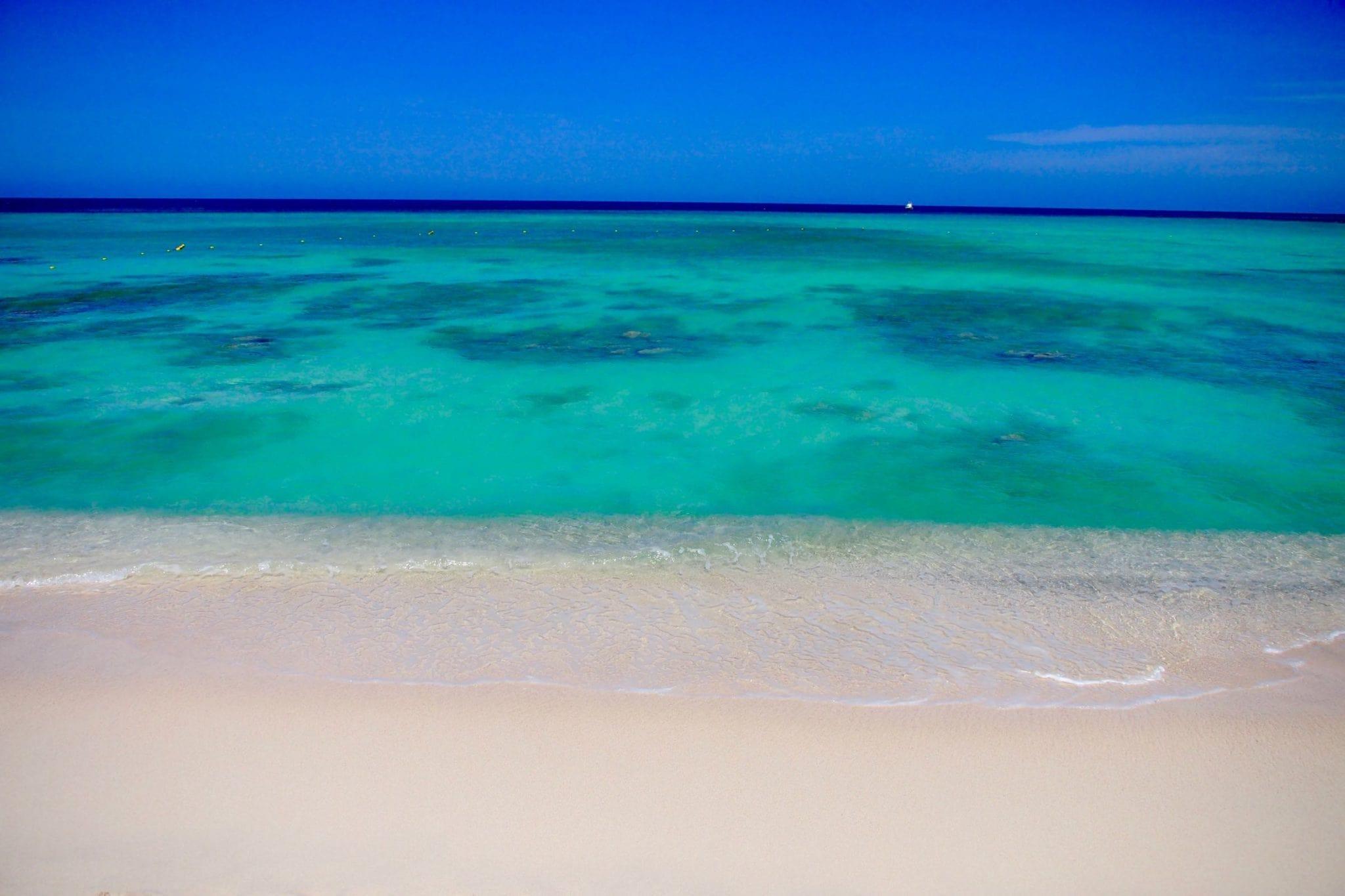 Searching for Answers on Arashi Beach, Aruba