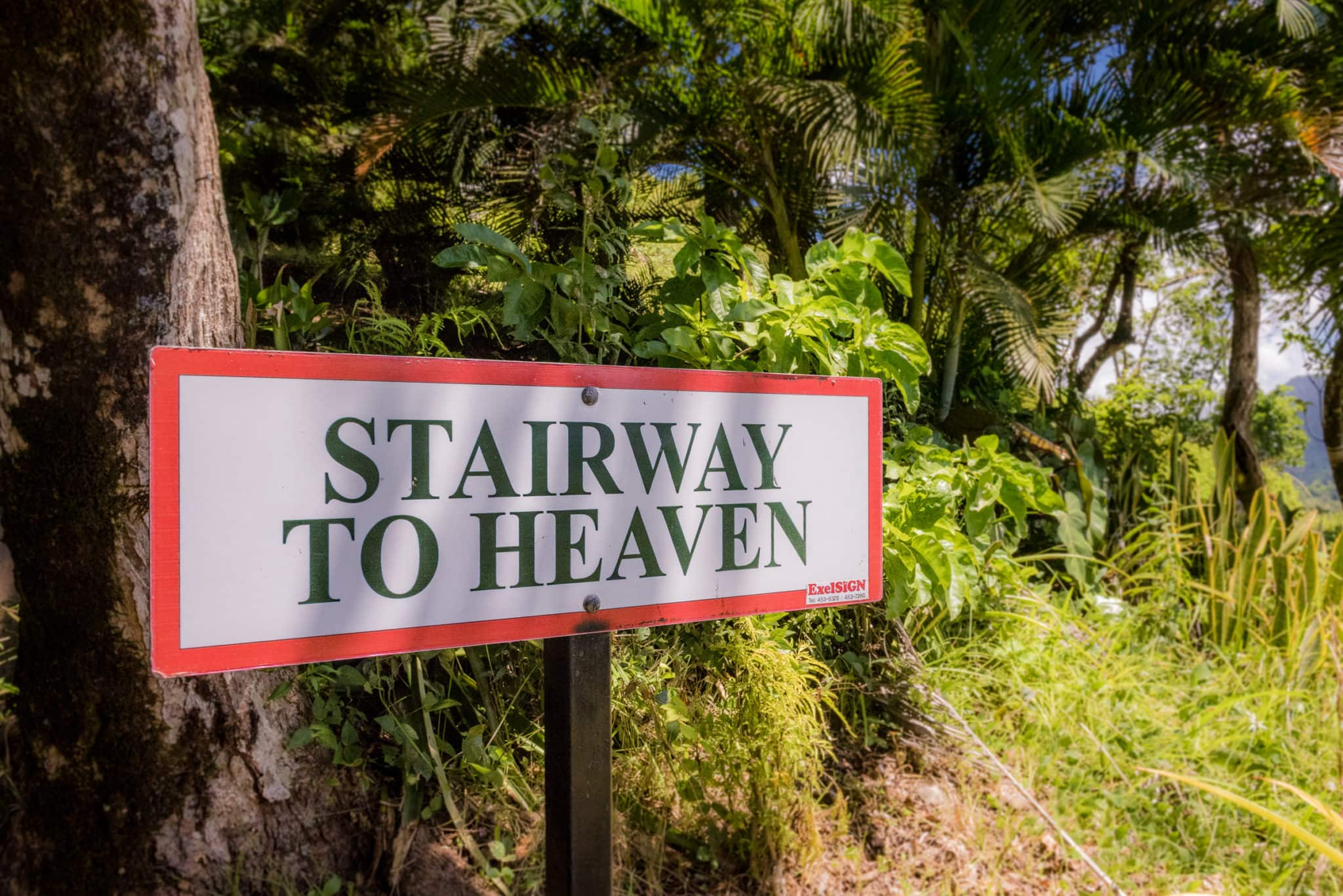 Tet Paul Stairway to Heaven sign by Patrick Bennett