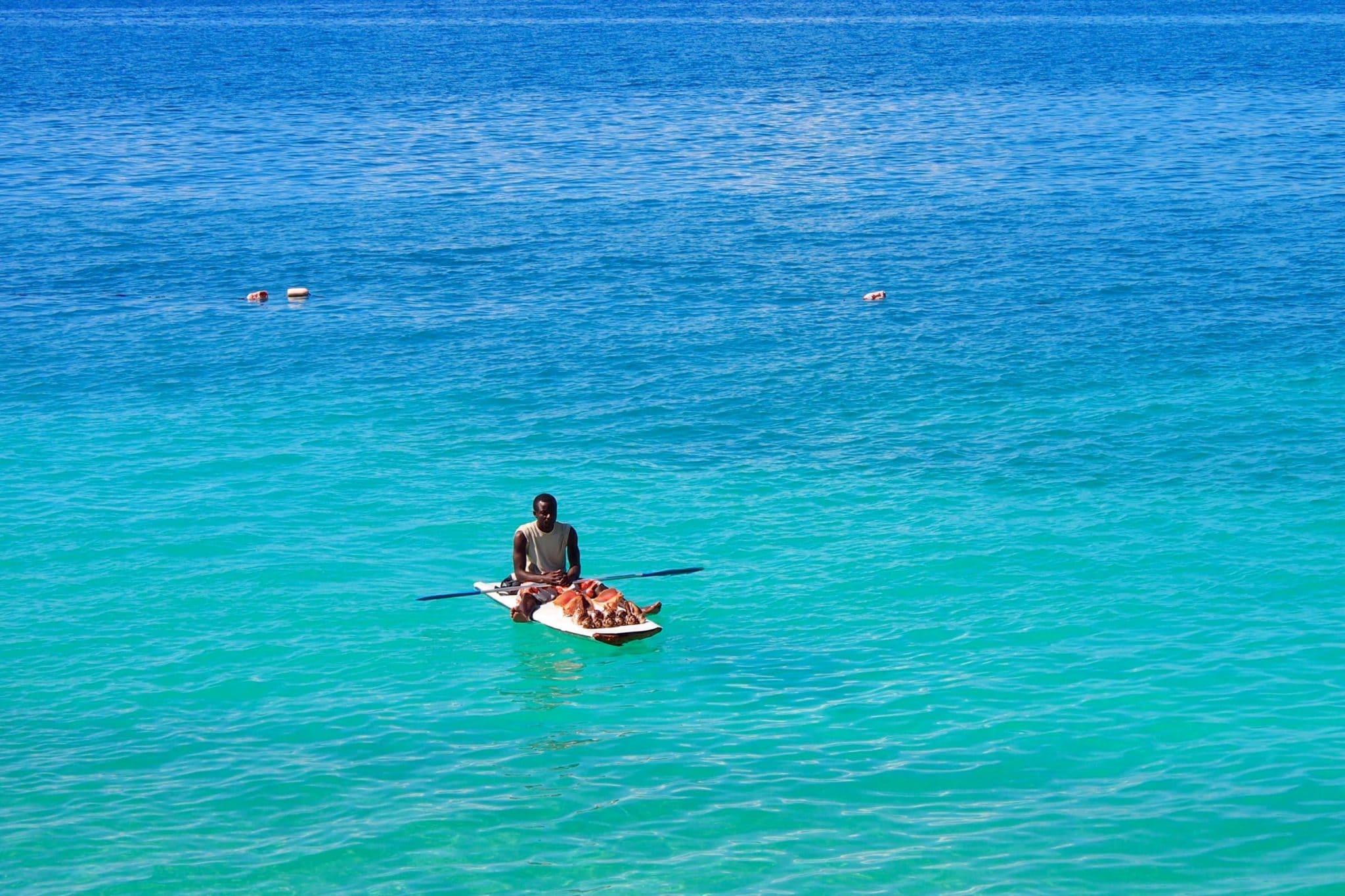 Hang-10 Higgling at Wahoo Bay, Haiti: Photo of the Day