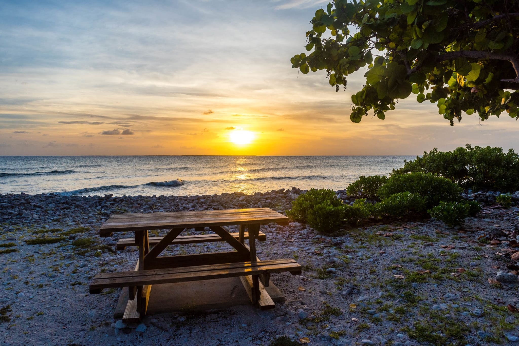 The Sunset Bench
