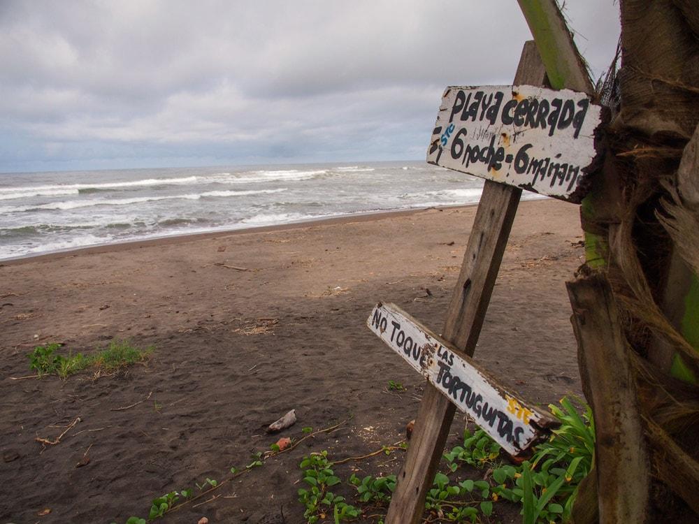 Rainy Day Zen on the Beaches of Tortuguero, Costa Rica