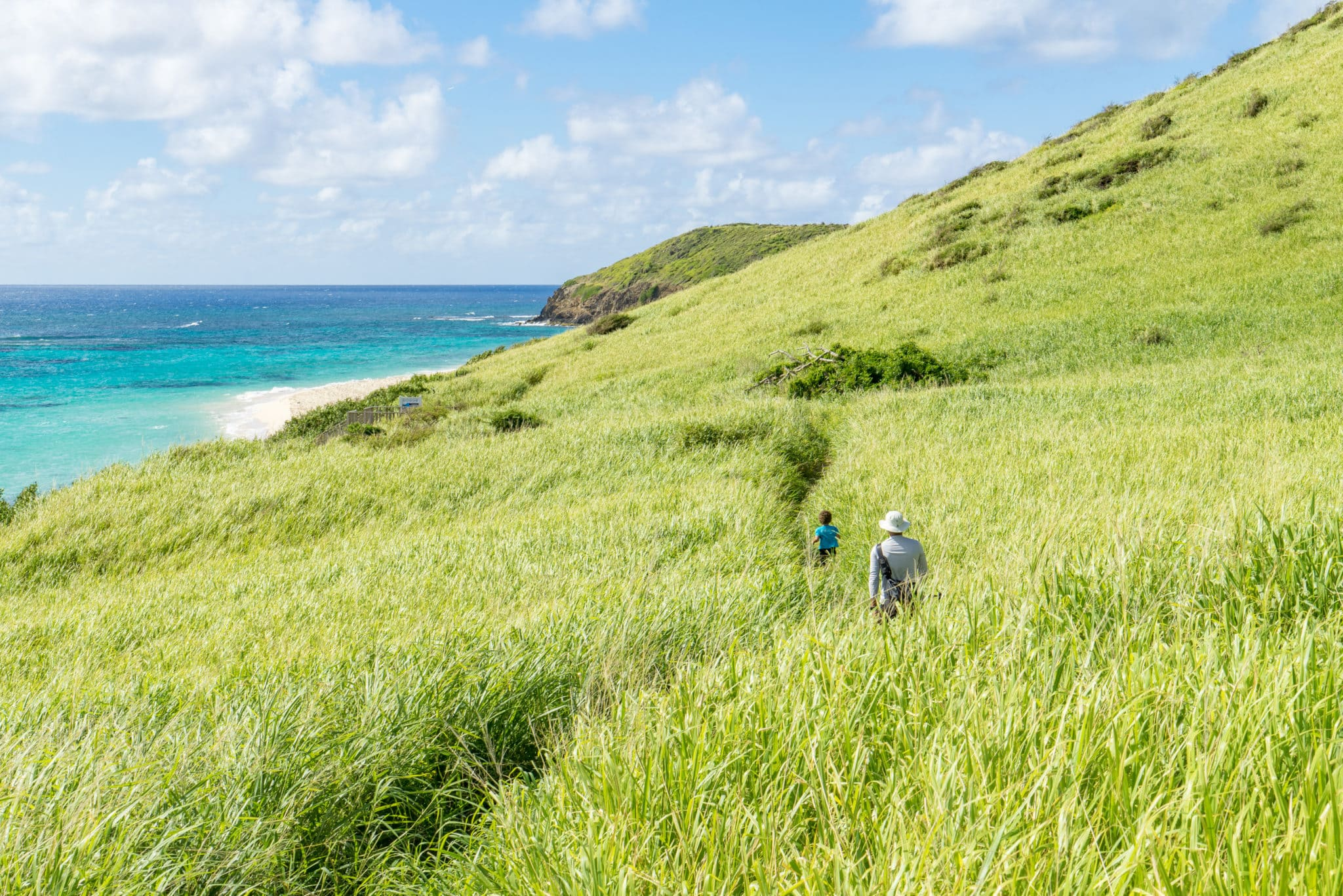 The Greening of St. Croix's Jack and Isaac Bays Preserve