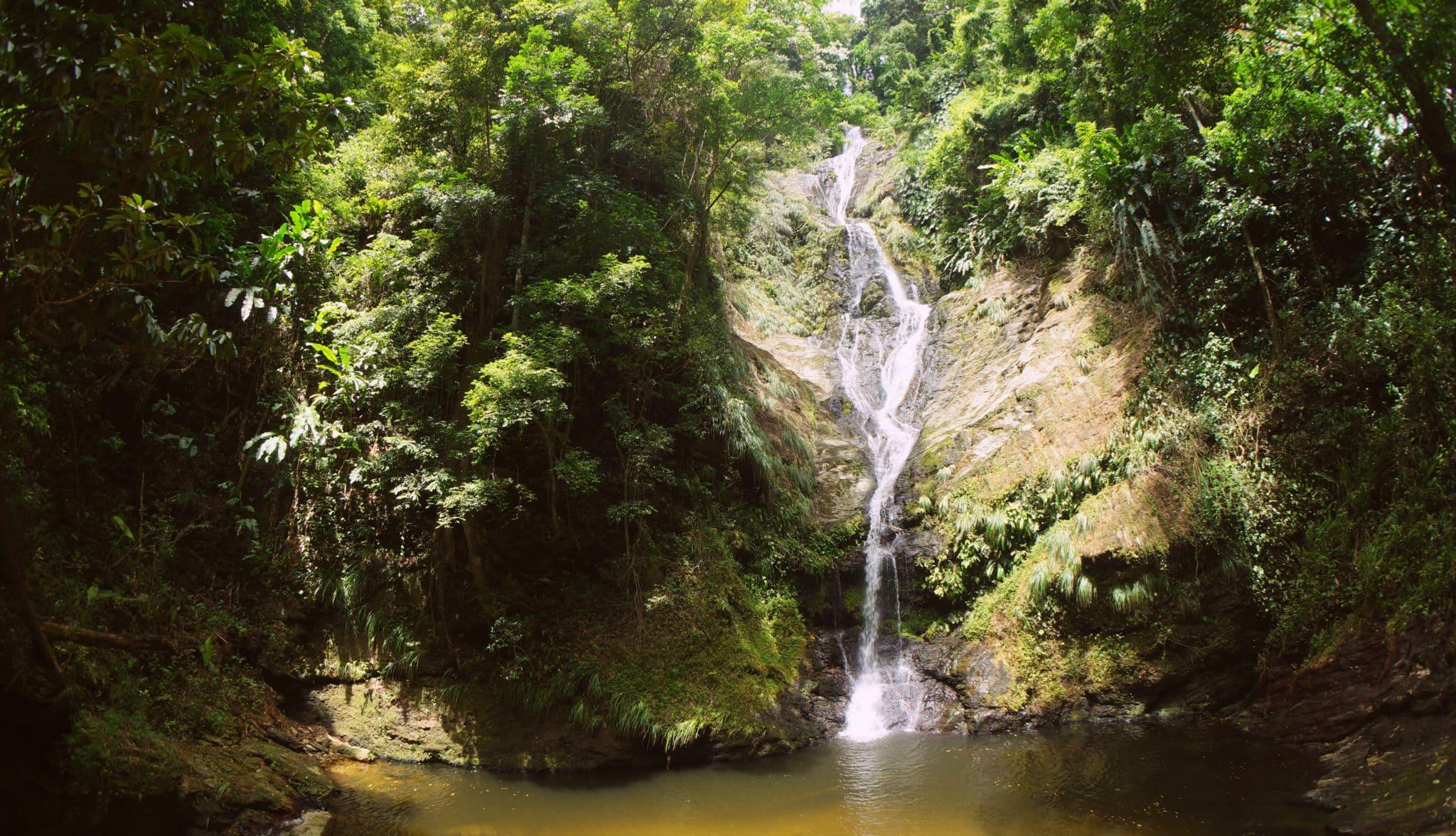 Hiking Rincon Falls, Trinidad