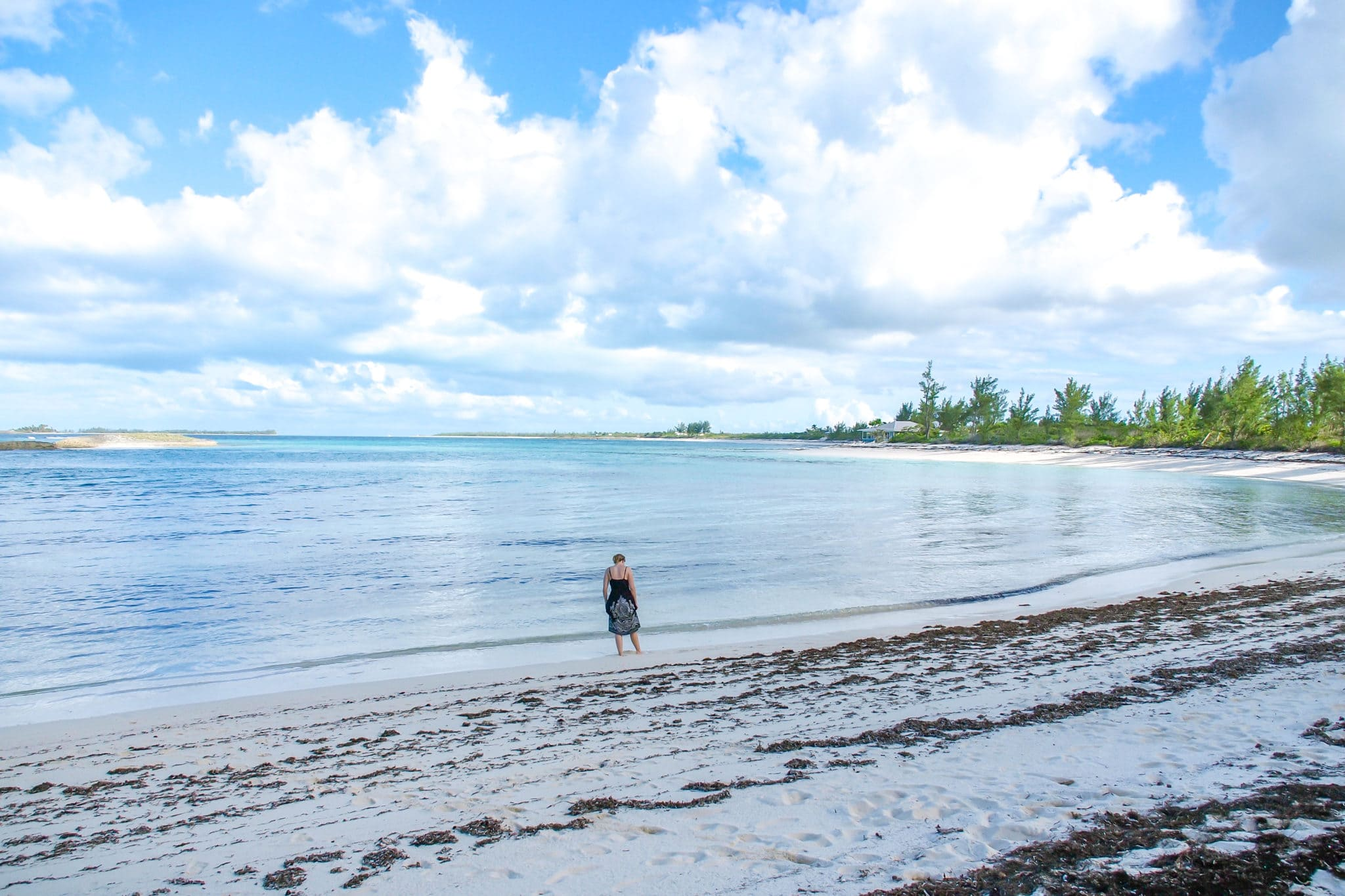 Exploring the Beaches of Green Turtle Cay: Wish You Were Here