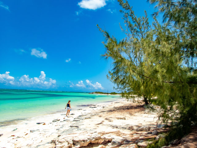 Unspoiled Turks and Caicos Beach Magic in North...