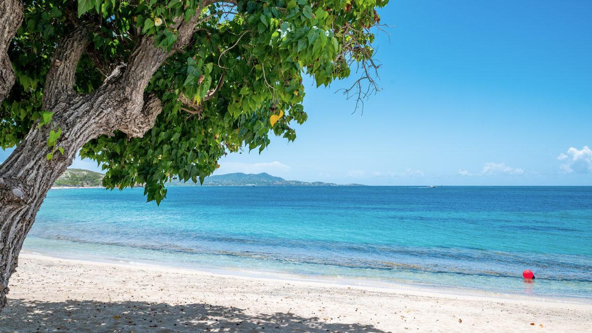 St. Croix Beach Zoom Virtual Background